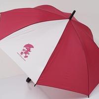 EMR TokyoDisneyRESORT ディズニー リゾート 子供用傘 USED美品 ミッキーマウス レッド 60cm 中古