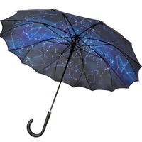 「満天の星空」一枚張サンフラワー骨傘  [IT6276]