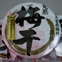 【完熟十郎】梅干し2.6kg(小田原曽我梅林産)
