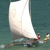 DVD「マダガスカルのカヌー 人類移動の足跡を求めて」