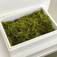 【Directly from Okinawa】Green caviar 1kg
