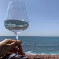 美しい波動を味わう ワイングラス