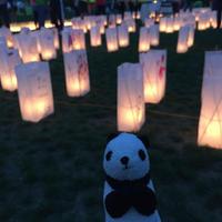 リレー・フォー・ライフ・ジャパン2016神戸1日ツアー