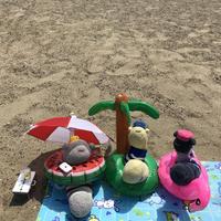 ビーチツアー&ビーチフェス(平成最後の夏のウナギフェス)