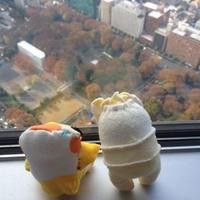 1泊2日四国スペシャルミステリーツアー第一弾(愛媛)