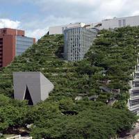 JALで行く福岡2日間 博多&筑豊・福智町の旅!