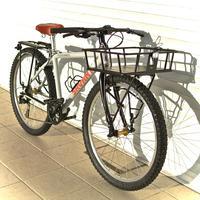 CycleWorld SAVANT SKATER