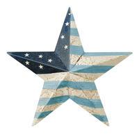 Barn Star US Flag