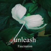 【CD】Fascination [Album]
