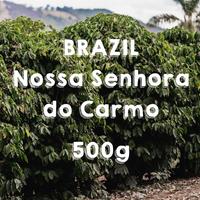 【SPECIALTY COFFEE】500g Brazil Nossa Senhora do Carmo Yellow Honey  / ブラジル ノッサ・セニョーラ・ド・カルモ  イエローハニー