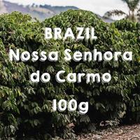 【SPECIALTY COFFEE】100g Brazil Nossa Senhora do Carmo Yellow Honey  / ブラジル ノッサ・セニョーラ・ド・カルモ  イエローハニー