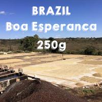 [2020 Taste of the Harvest 6位入賞ロット]250g Brazil Boa Esperanca Natural / ブラジル ボア・エスペランサ農園 ナチュラル