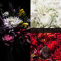 【花束+音楽DLコード+CD】Close to you + LAST WALTZ IN TOKYO[2CD]  / world's end girlfriend & arbluem【A】