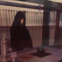 メトロノリ / 伴侶 [CD]