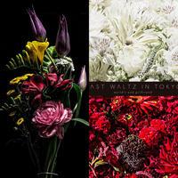 【花束+音楽DLコード+CD】Close to you + LAST WALTZ IN TOKYO[2CD] / world's end girlfriend & arbluem【C】