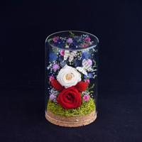 花ギフト ココロハナ  Colón113