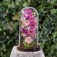 花ギフト ガラスドーム ジニア&ローズPINK