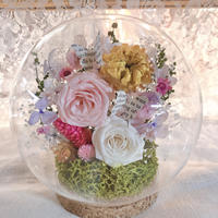 Botanical dome pink&wht