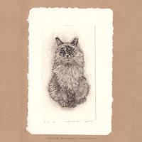 坂本千明 紙版画「猫7」*シート