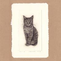 坂本千明 紙版画「猫8」*シート
