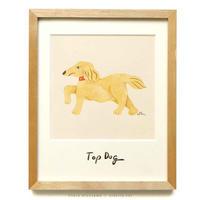 水沢そら「Top Dog」