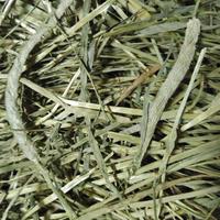 US産チモシー ダブルプレス 1番刈り(3kg)