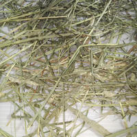 US産チモシーダブルプレス2番刈り(5kg)