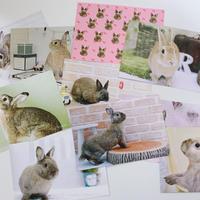 ポストカード10枚セット[10 pack postcards]