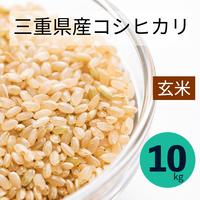 【宅配玄米10kg】令和3年  采女コシヒカリ10kg 玄米