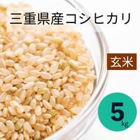 【宅配玄米5kg】令和3年  采女コシヒカリ5kg 玄米