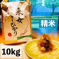 【宅配精米10kg】令和3年  采女コシヒカリ10kg 精米済
