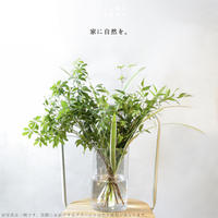 HOME GREEN (エリア限定商品/配送料無料・クール便代のみ)