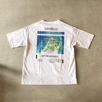 SULLO LAND SCAPE PAINTING BIG TEE