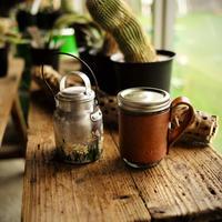 Welsh Mtn Co. Mason Jar Mug