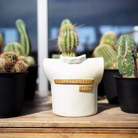 BROWN by 2-tacs, Organic cotton 100% vase(B-F005)