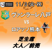 2020年11月3日(火・祝)J3第25節 ヴァンラーレ八戸vsロアッソ熊本 芝生席 大人/前売