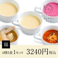 シェフが恋した塩尻野菜のスープ【陽】1セット