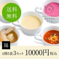 シェフが恋した塩尻野菜のスープ【陽】3セット(送料無料)