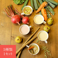 シェフが恋した塩尻野菜のスープ【冬】1セット