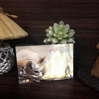 ポストカード モフクエ/賢者とフェネックギツネの魔法 2018for花蓮 HANDandHEART