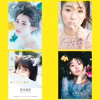 TEAM SHACHI アートブックコレクション【イベント対象】