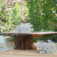 コレクション木製の豪華なコレクション、ブライダルスタンド、結婚式の装飾、家の装飾、素朴な結婚式の装飾