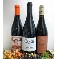 自然派ワイン ビオデナミ赤ワイン3本セット
