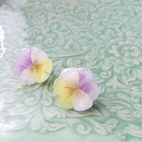 ビオラのピアス・イヤリング  Pastel color