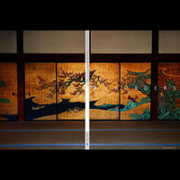 【写真集】界/BORDERS Kyoto edition 2015