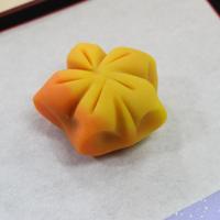 おうちで楽しむ ねりきり☆材料セット/柿+紅葉