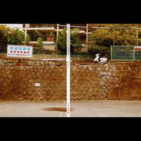 【写真集】界/BORDERS Kanagawa edition 1