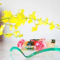 """和歌屋の琥珀糖『宝石』春 """"Spring"""""""