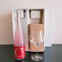 【数量限定】『WAKAZE新ロゴグラス』&『FONIA tea ORIENTAL sparking~(フォニア ティー オリエンタル スパークリング) 500ml 1本』の特別セット