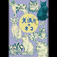 【Jungle Bell Theater】2013年春公演「天満月のネコ」公演DVD